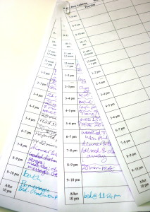Schedule Sheets